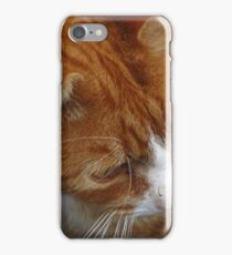 FELINE FACE iPhone Case/Skin