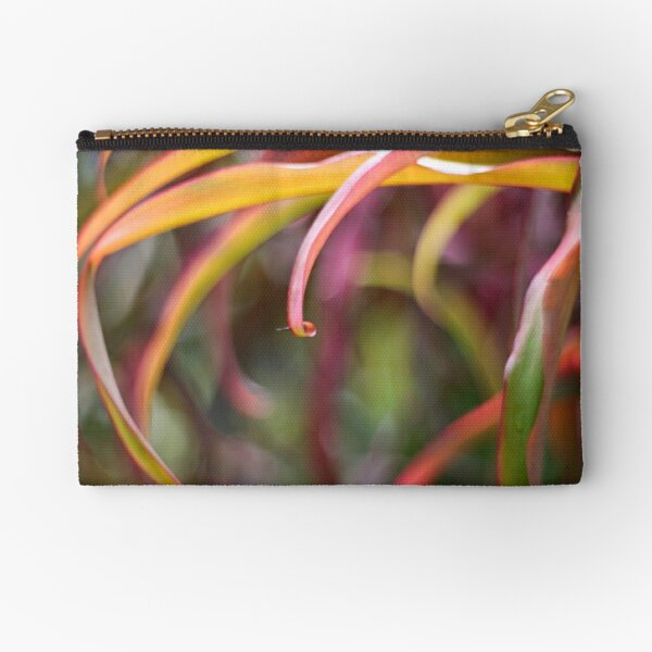The curl Zipper Pouch