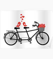 tandem bicycle with cute love birds Poster