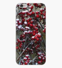 Merry Christmas - Snow covered Red Berries  iPhone Case