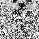 hedgehog by Bronia Sawyer