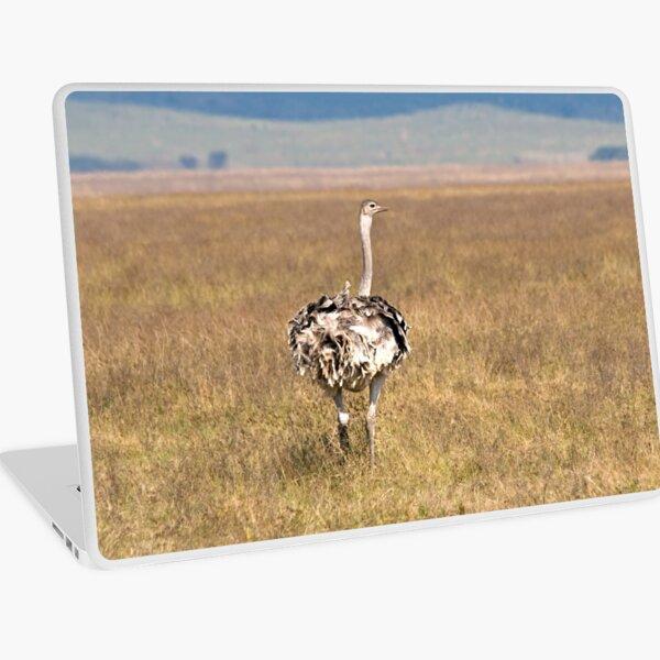 Female Ostrich Laptop Skin