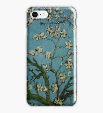 Van Gogh- Almond Blossoms iPhone Case/Skin