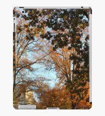 Fall Trees iPad Case/Skin
