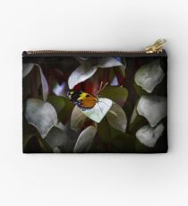 Mindo Butterfly Standing Pretty Studio Pouch