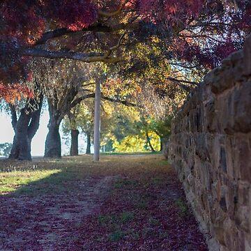 Autumn Wall by RainyMaree