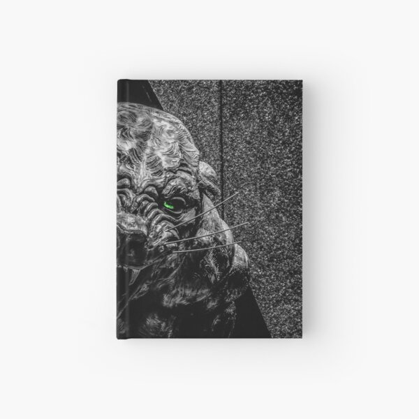 panthers Hardcover Journal