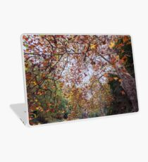 Autumn at Waterfall Gully Laptop Skin