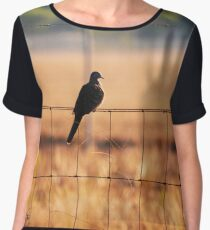 Bird On A Wire Chiffon Top