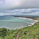 Widemouth Bay in North Cornwall by Avril Harris