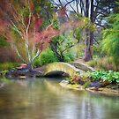 Christchurch Gardens by Linda Cutche