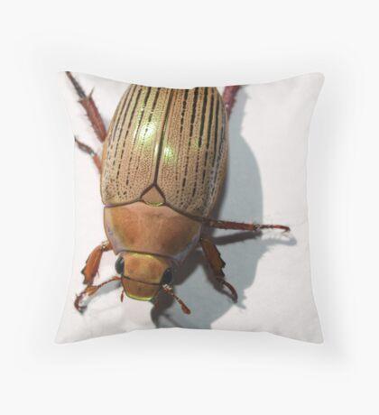 Christmas Beetle Throw Pillow
