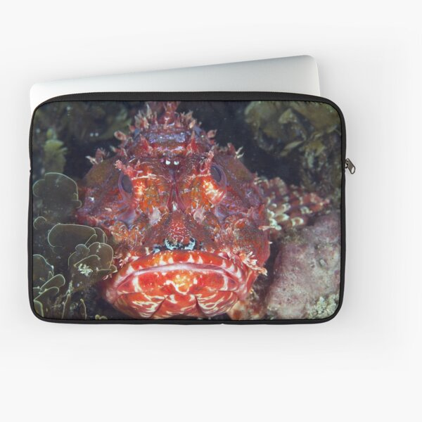 Angry red fish Laptop Sleeve
