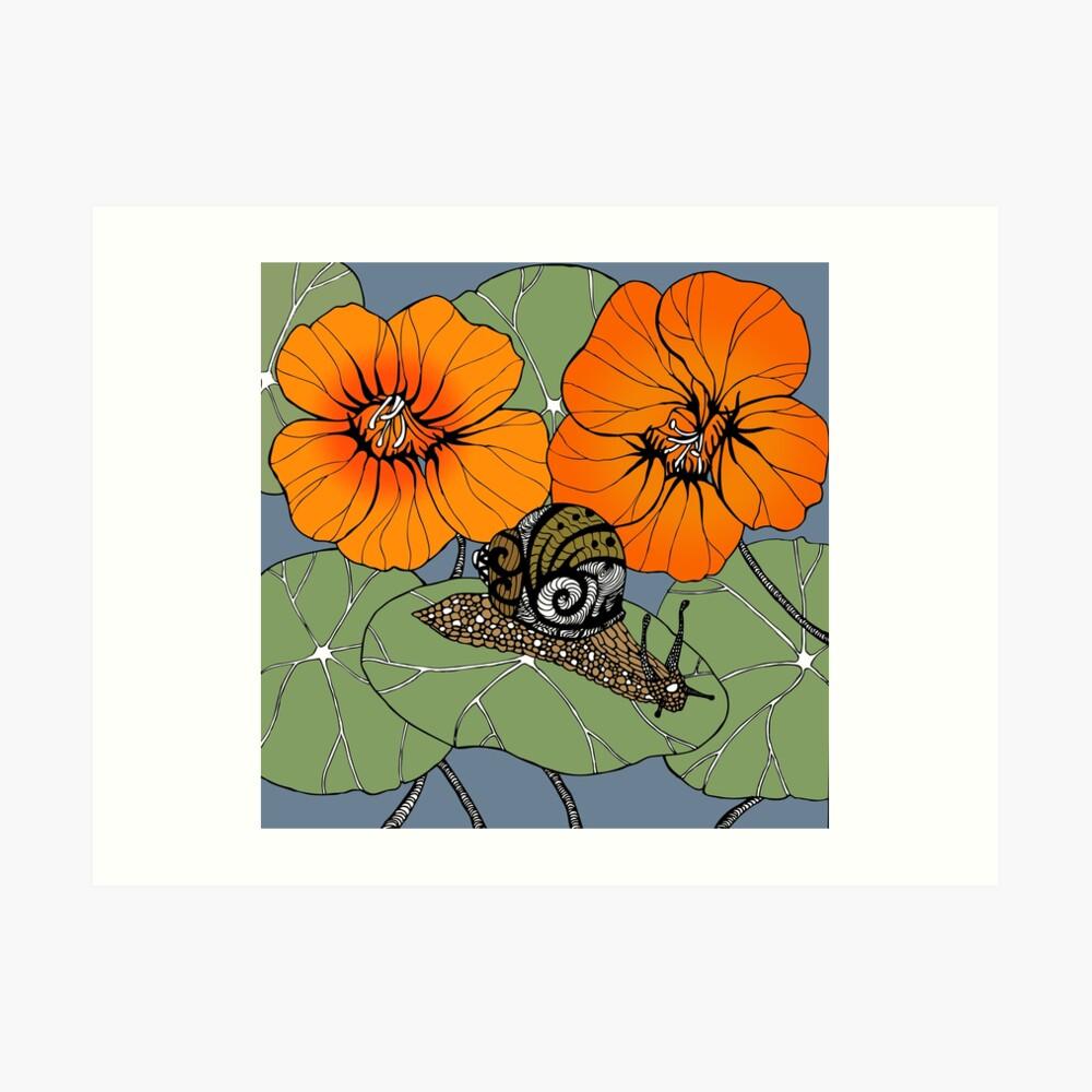 Snail with Nasturtiums Art Print