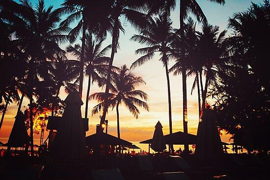 Tropical beach with palm trees by dariazu