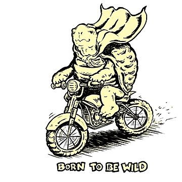 Born to Be Wild by willhpacheco