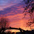 Autumn Sunset by Gilberte