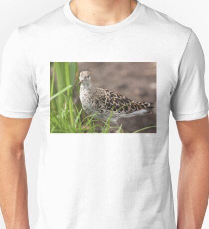 Female Ruff T-Shirt