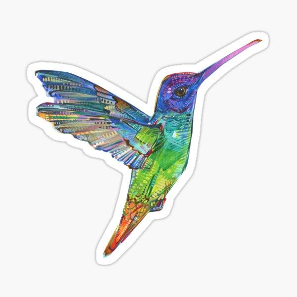 Golden-tailed Sapphire Hummingbird Painting - 2016 Sticker