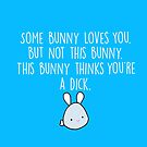 Not This Bunny by Stacey Roman