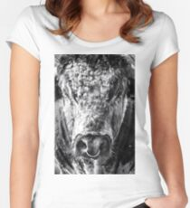 English Longhorn Bull Women's Fitted Scoop T-Shirt
