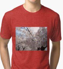 Sakura - 23 Tri-blend T-Shirt
