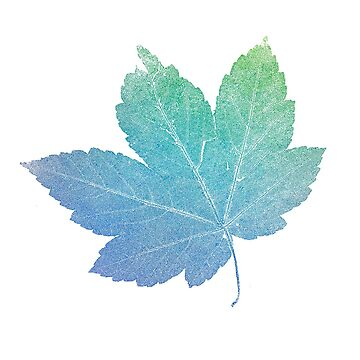 colorfull skeleton Leaf blue by imfine