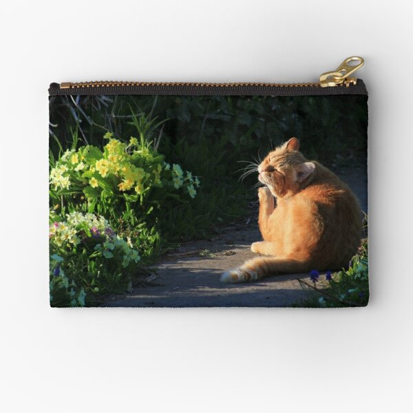 Ginger cat in garden at evening time Zipper Pouch