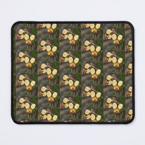 Donkey Orchid Mouse Pad
