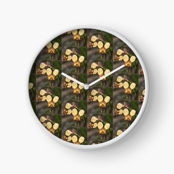 Donkey Orchid Clock