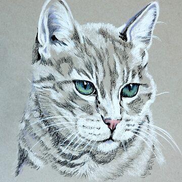 Cat Portrait by KateMarieLewis