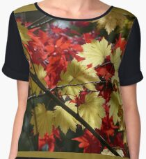 Mt Wilson Women's Chiffon Top