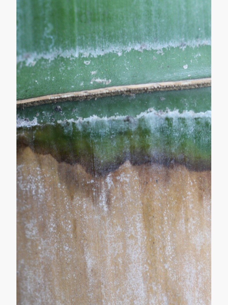 green edges by yvesrossetti