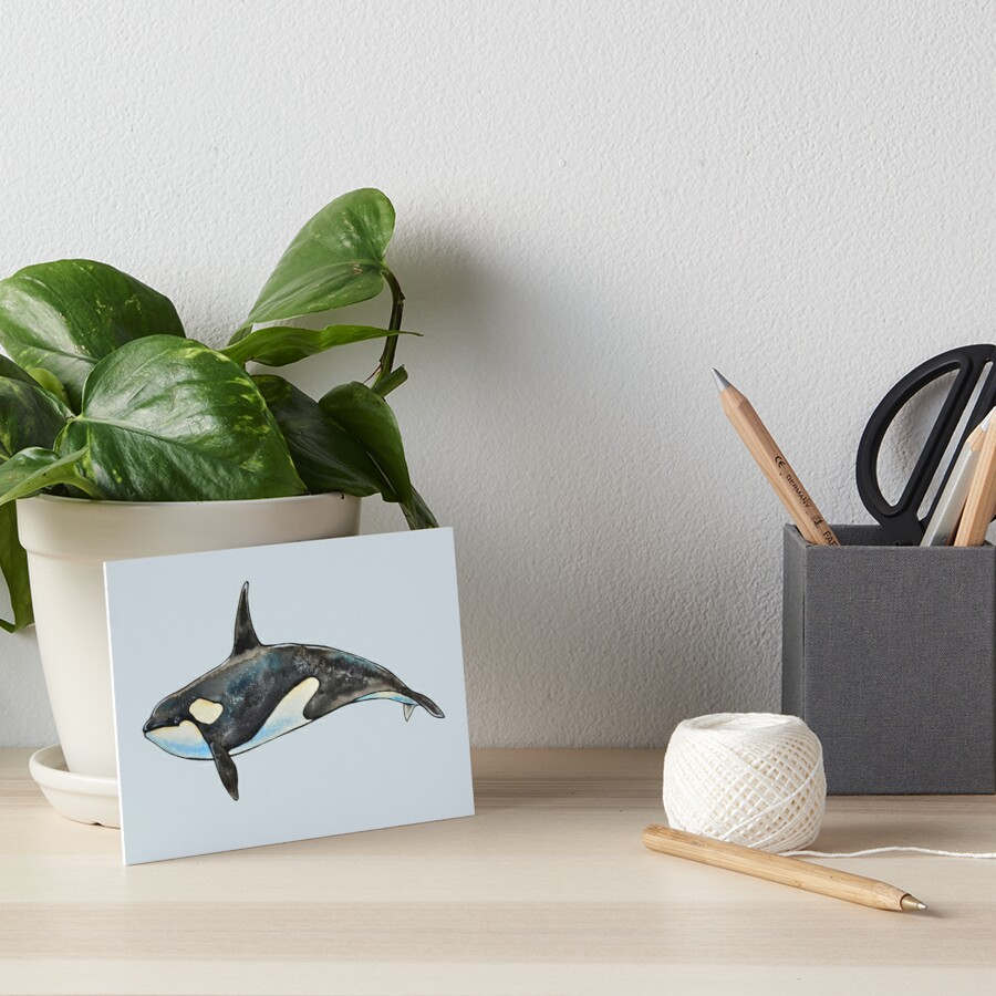 Orca on blue Art Board Print