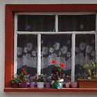 A window by rasim1