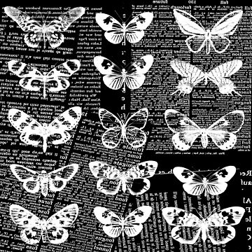Black and white butterfly collage #2 by Carolynne