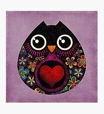 Owl's Hatch Photographic Print