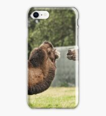 Give us a kiss iPhone Case/Skin