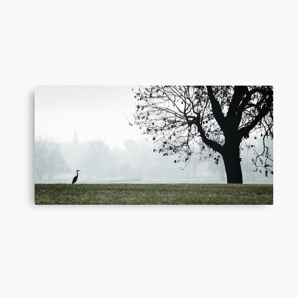 Heron on Westbridge Park Canvas Print