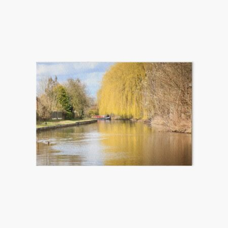 Willow on the Canal Art Board Print