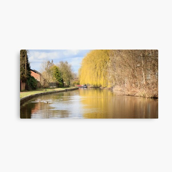 Willow on the Canal Canvas Print
