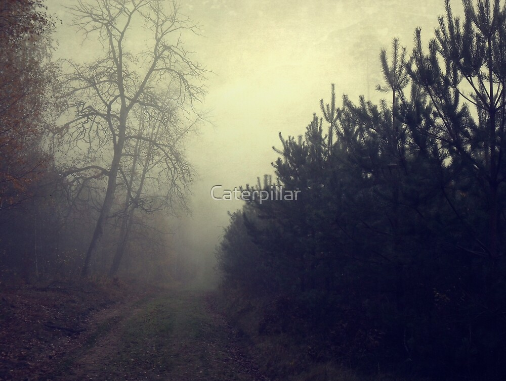 Drowning in the fog by Caterpillar