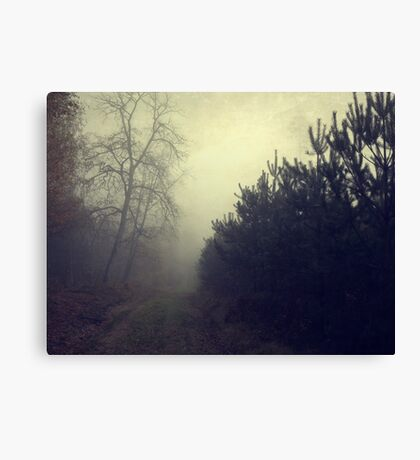 Drowning in the fog Canvas Print