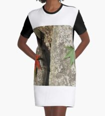 Alterity Graphic T-Shirt Dress