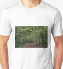The Woods in Autumn  T-Shirt
