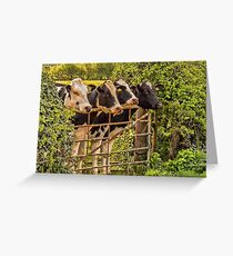 #12 Stand to attention Greeting Card
