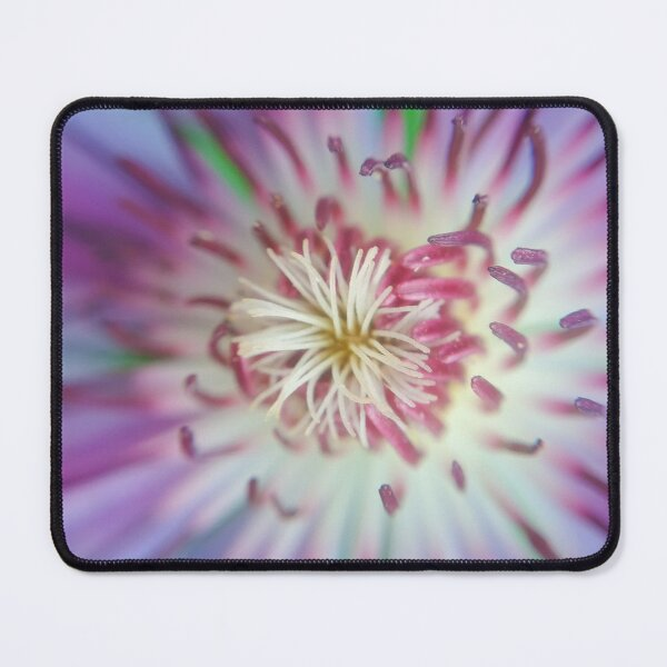 Clematis flower Mouse Pad
