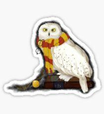 Pegatina Hedwig el búho