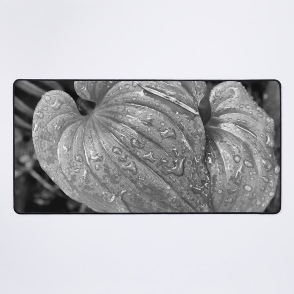Rain on Lily of the Valley Desk Mat