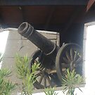 Cannon by christinawalker